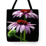 Warm Lavender Coneflower Tote Bag