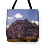 Warm Light In Red Rock Canyon Tote Bag