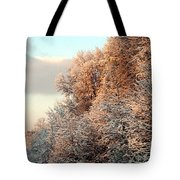 Warm Light Snow Tote Bag