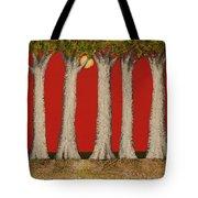 Warm Sky, Cool Trees Tote Bag