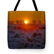 Warm Sunrise In Winter Tote Bag