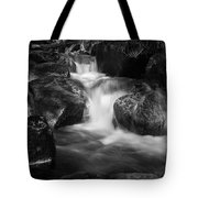 Warme Bode, Harz - Monochrome Version Tote Bag