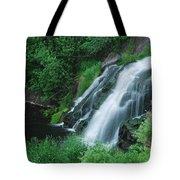 Warner Falls Tote Bag by Michael Peychich