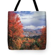 212m45-wasatch Mountains In Autumn  Tote Bag