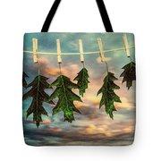 Wash Day Tote Bag by Bob Orsillo