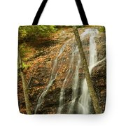 Wash Hollow Falls Nantahala National Forest Nc Tote Bag