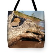 Washing Away Tote Bag