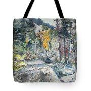 The Enchantments Tote Bag