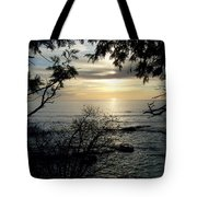Washington Island Morning 4 Tote Bag
