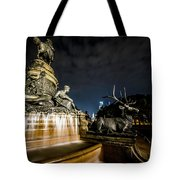 Washington Monument Fountain Tote Bag