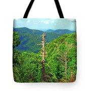 Washington National Forest,wv Tote Bag