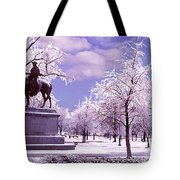 Washington Square Park Tote Bag by Steve Karol