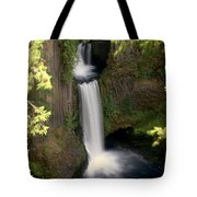 Washington Waterfall Tote Bag