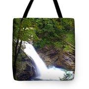 Washngton Falls1 Tote Bag
