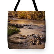 Washoe Park In Autumn Tote Bag
