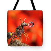 Wasp Blowing Bubble 160507c Tote Bag