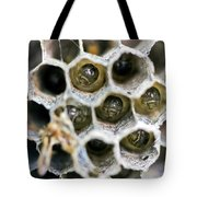 Wasp Nursery Tote Bag