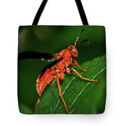 Wasp On A Leaf 001 Tote Bag