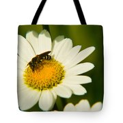 Wasp On Daisy Tote Bag