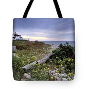 Watch Hill Lighthouse - Fm000062 Tote Bag