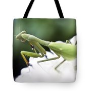 Watch Me Prey Tote Bag