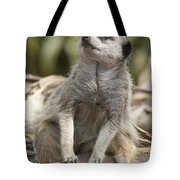 Watch Out From Sky Tote Bag