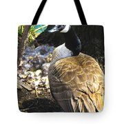Watchful And Proud Tote Bag