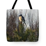 Watchful Blue Jay Tote Bag