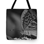 Watchful Butterfly Tote Bag