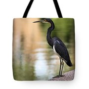 Watchful Tote Bag