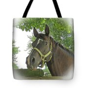 Watchful Mare Tote Bag