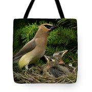 Watchful Parent Tote Bag