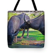 Watching 2 Water Buffalos 1 Water Buffalo Watching Me Tote Bag