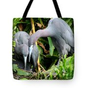 Watching The Hatching Tote Bag