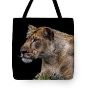 Watching Closely Tote Bag