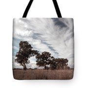 Watching Clouds Float Across The Sky Tote Bag
