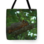 Watching From Above Tote Bag