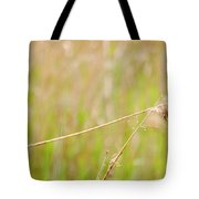 Watching Kingfisher Tote Bag