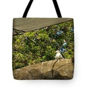 Watching Over Penguins Tote Bag
