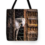 Watching The Snow Fall Tote Bag