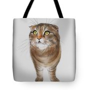 Watching The Snow Falling Tote Bag