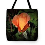 Water Beads On Orange Rose Tote Bag
