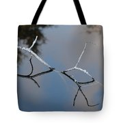 Water Bridge In Color Tote Bag