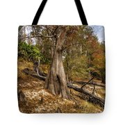 Water Cypress Tote Bag
