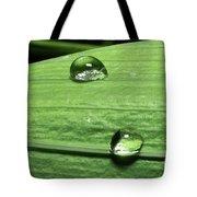 Water Droplet On A Leaf Tote Bag