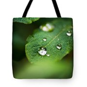 Water Droplets Tote Bag by Adnan Bhatti