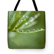 Water Droplets On Evergreen Tote Bag
