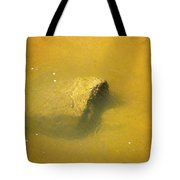 Water Flowing Over Submerged Boulder Tote Bag