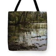 Water Garden Lake View Tote Bag