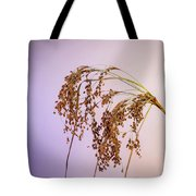 Drooping Teddy Bear Grass Tote Bag